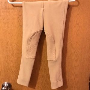 Pants - Windsor Riding Breeches